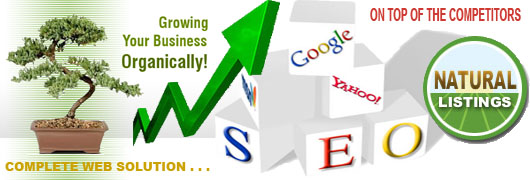 organic seo technology environment - SEO